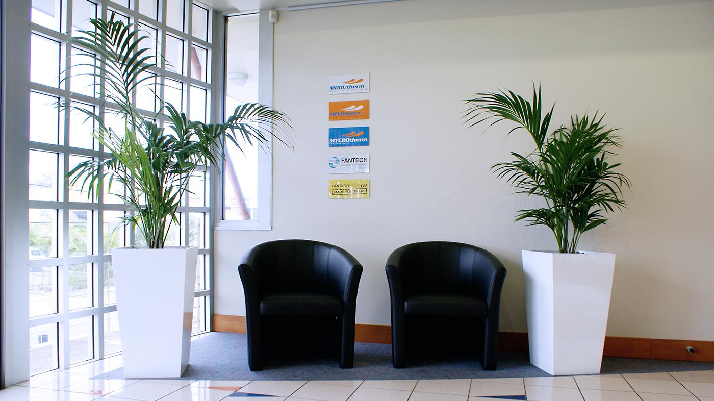 Beautiful Indoor plant - Indoor Plant Hire - Prestigious Plantscapes