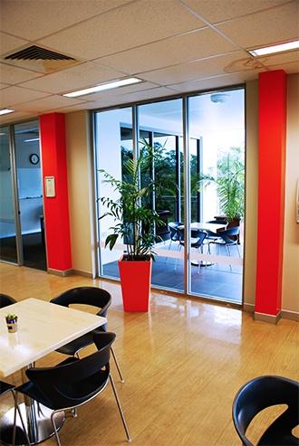 Health Benefits - Indoor Plants Brisbane - Prestigious Plantscapes