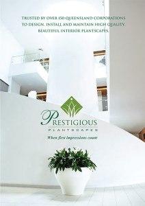 PP-Brochure