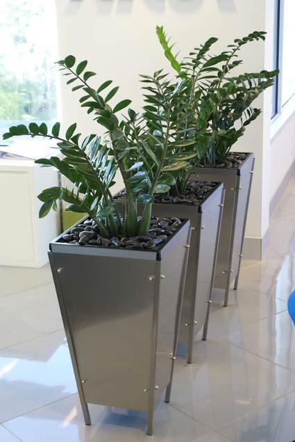 Professionally designed indoor plants