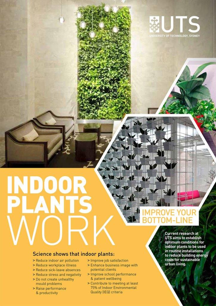 indoor-plant-study