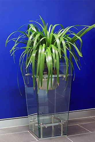 Improve Air Quality - Indoor Plants Brisbane - Prestigious Plantscapes